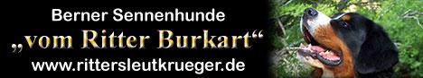 Berner Sennenhunde - vom Ritter Burkart